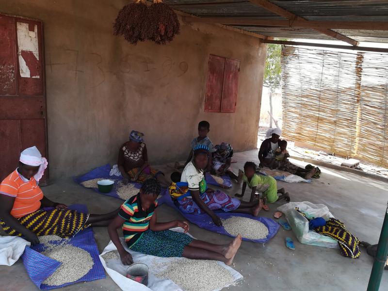 Cazaban_06022018_Burkina Faso_Tri des semences (2).jpg