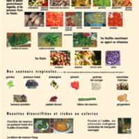Couleurs, odeurs et saveurs gabonaises