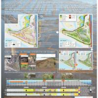 Dynamique  de la végétation et restauration écologique du secteur dépoldérisé de Graveyron