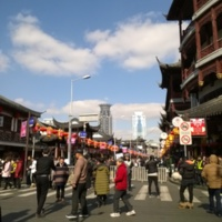 DEFOIN--MERLIN_Sarah_Photographie1_Fête_Printemps_Shanghai.jpg