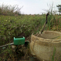 Mécanisme d'irrigation dans la commune de Ndiaganiao.jpg