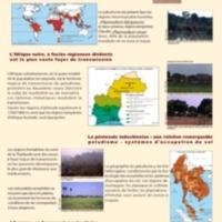 Le paludisme, un défi majeur pour le 21 e siècle