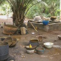 Fabrication de l'huile de palme