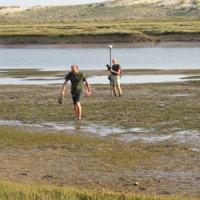 Quand les tempêtes nourrissent et protègent les marais littoraux