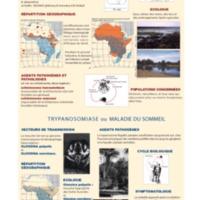 Bilharziose et trypanosomiase en Afrique