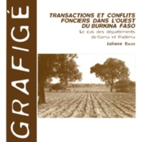 Transactions et conflits fonciers dans l'ouest du Burkina Faso : le cas des départements de Bama et Padéma. Mémoire de DEA